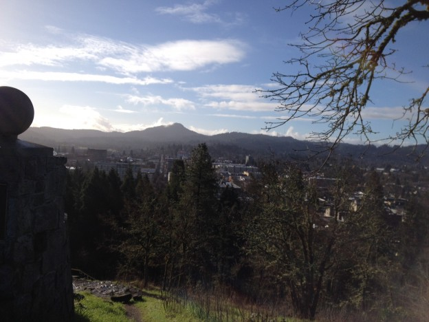 view from skinner butte